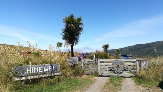 Hinewai Reservation, NZ