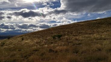 Mt. John, Tekapo, NZ